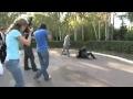 video A ostias con el fotografo de bodas